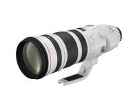 Canon EF 200-400/4,0 L IS USM + Ext. 1,4x